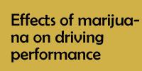 Effects of marijuana on driving performance